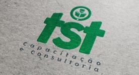 Tst Capacitação de consultoria
