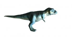T. Rex / Mudbox